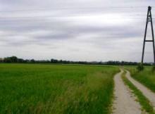 Murska ravnica